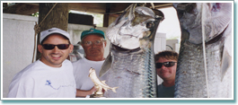 Tarpon Tournament most catch and release