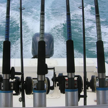 Naples Fishing Charters